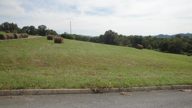 L 11 Elaine Drive, Tazewell, TN 37879 (#1084028) :: Shannon Foster Boline Group