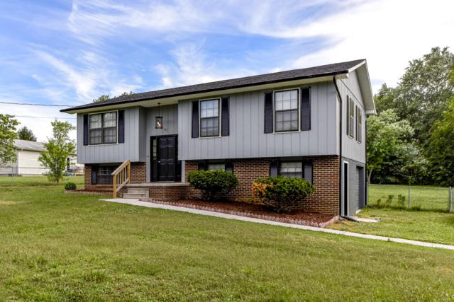 753 Lafollette Drive, Maryville, TN 37801 (#1084035) :: Shannon Foster Boline Group