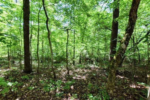 Lot 211 Hickory Drive #2, Spring City, TN 37381 (#1084043) :: Venture Real Estate Services, Inc.