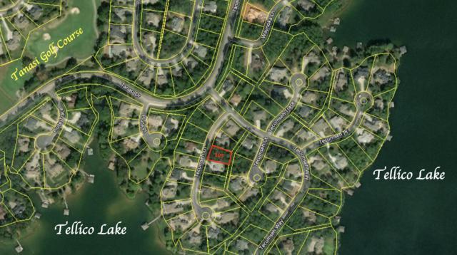 105 Tecumseh Lane Lot 17, Loudon, TN 37774 (#1084054) :: Catrina Foster Group