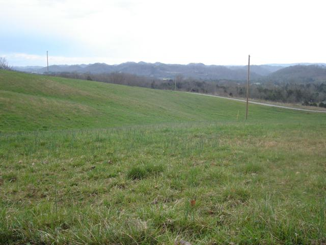 L 29 Perkey Rd, Tazewell, TN 37879 (#1084071) :: The Cook Team