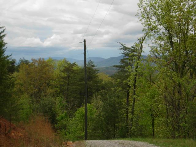 Bullet Mountain Drive, Tellico Plains, TN 37385 (#1084077) :: Realty Executives