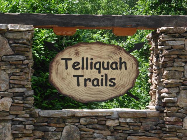 Bullet Mountain Drive, Tellico Plains, TN 37385 (#1084086) :: Venture Real Estate Services, Inc.