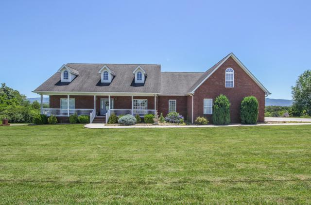 405 Carpenters View Drive, Maryville, TN 37801 (#1084106) :: Shannon Foster Boline Group
