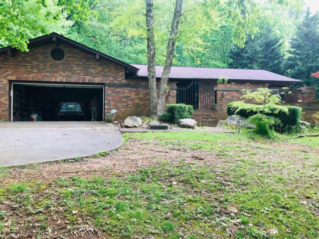520 S David Lane, Knoxville, TN 37922 (#1084207) :: Billy Houston Group