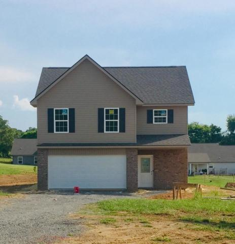 321 Vista View Way, Maryville, TN 37801 (#1084305) :: Shannon Foster Boline Group