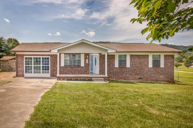 307 Rhodes Rd, New Market, TN 37820 (#1084418) :: Shannon Foster Boline Group