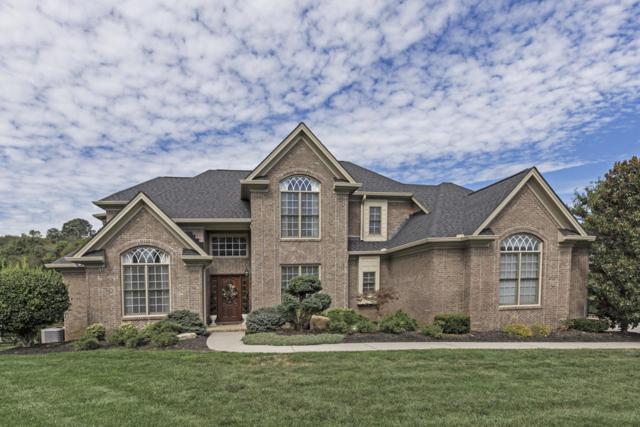 11 Radcliff Terrace, Oak Ridge, TN 37830 (#1084558) :: Realty Executives