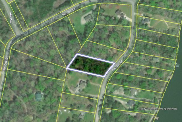 Lot 77 Pin Oak Drive Drive, Rockwood, TN 37854 (#1084589) :: Shannon Foster Boline Group