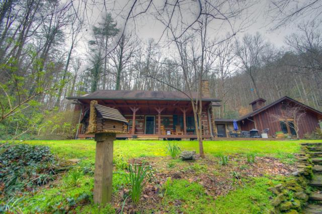 3332 Waldens Creek Rd, Sevierville, TN 37862 (#1084692) :: Shannon Foster Boline Group