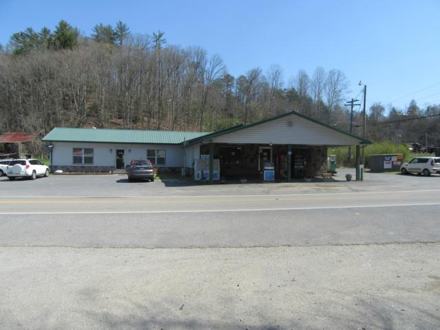 790 Highway 107, Del Rio, TN 37727 (#1084913) :: Venture Real Estate Services, Inc.