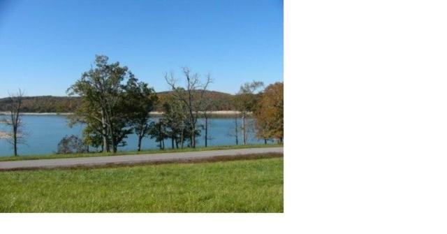 Lot 209 Captains Cove, Sharps Chapel, TN 37866 (#1084934) :: Realty Executives