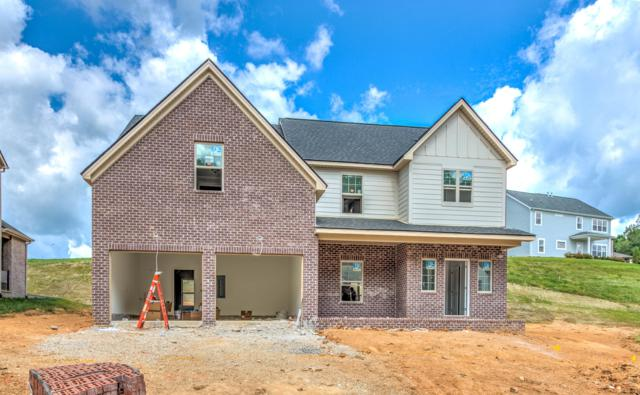 10705 Hunters Knoll Lane (Lot 235), Knoxville, TN 37932 (#1085091) :: Catrina Foster Group