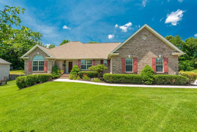 7813 Scenic View Dr, Knoxville, TN 37938 (#1085195) :: Catrina Foster Group