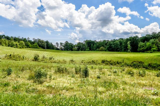 Tract 5 Lower Rockwood Rd, Rockwood, TN 37854 (#1085243) :: Catrina Foster Group