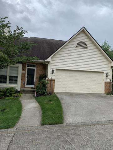 9906 Carrington Drive, Knoxville, TN 37923 (#1085250) :: Catrina Foster Group
