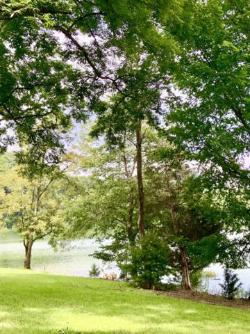 Walnut Bend Drive, Mooresburg, TN 37811 (#1085348) :: Billy Houston Group