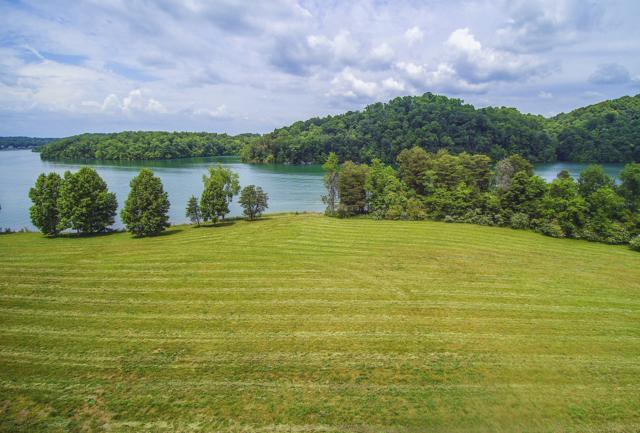 250 Bay Pointe Rd, Vonore, TN 37885 (#1085456) :: Shannon Foster Boline Group