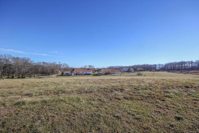 530 Doc Norton Rd, Walland, TN 37886 (#1085467) :: SMOKY's Real Estate LLC
