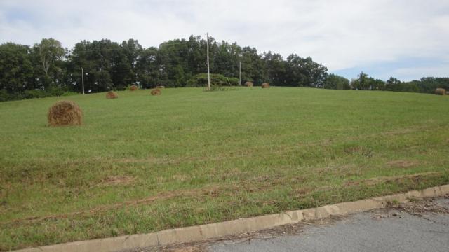 L 20 Elaine Drive, Tazewell, TN 37879 (#1085616) :: Venture Real Estate Services, Inc.