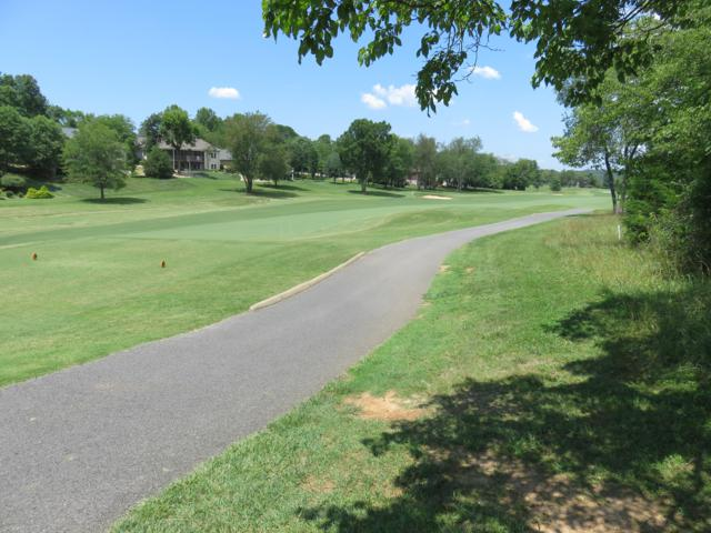 Dud Trail Lot 11, Vonore, TN 37885 (#1085756) :: Billy Houston Group