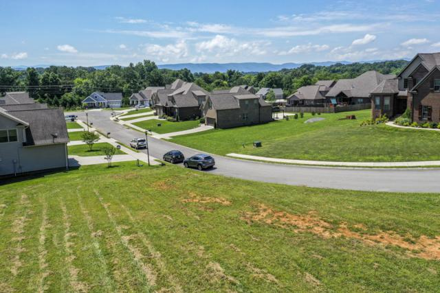 643 Karch Drive, Maryville, TN 37803 (#1085870) :: Realty Executives