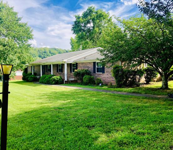 4527 Terrace View Rd, Louisville, TN 37777 (#1085881) :: Shannon Foster Boline Group