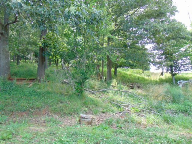 Edwina Bridgeport Rd, Newport, TN 37821 (#1085945) :: The Creel Group | Keller Williams Realty