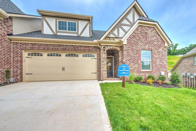 427 Sunny Springs Lane, Knoxville, TN 37922 (#1085985) :: Realty Executives