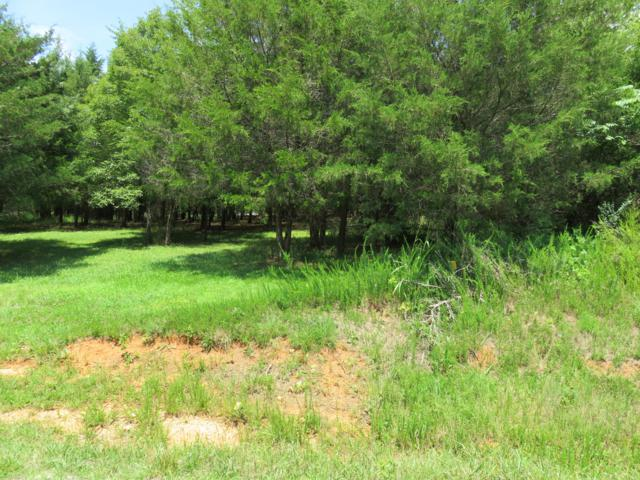 Sikwa Trail Lot 7, Vonore, TN 37885 (#1086083) :: Billy Houston Group