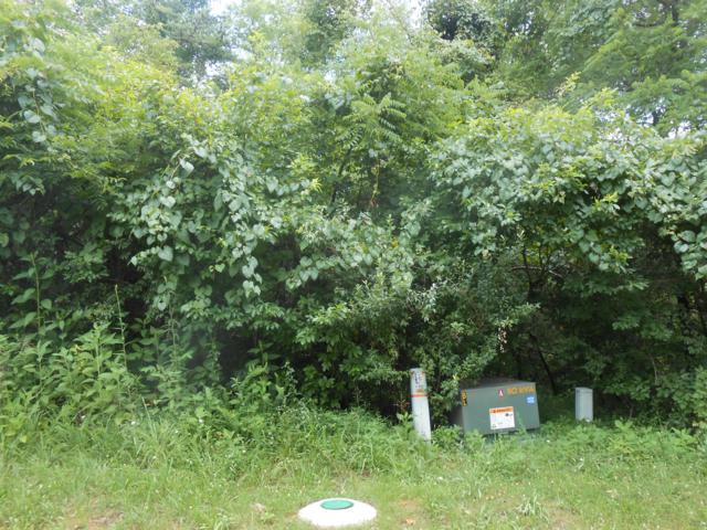 123 Okema Lane, Loudon, TN 37774 (#1086599) :: Billy Houston Group
