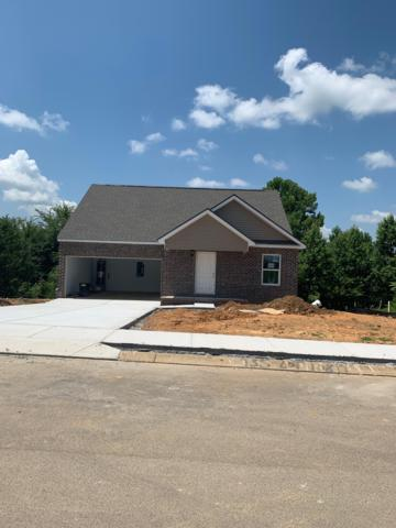 935 Spring Creek St, Maryville, TN 37801 (#1086703) :: Shannon Foster Boline Group
