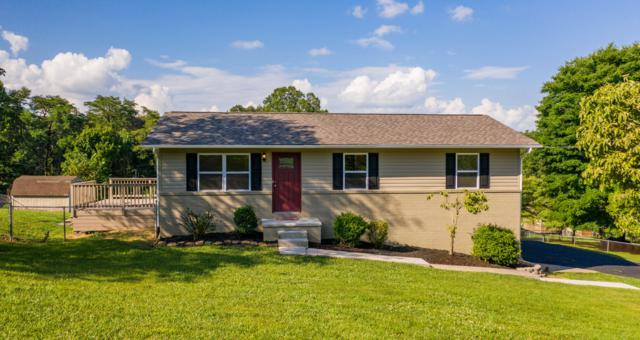 6212 Renee Rd, Corryton, TN 37721 (#1086856) :: Shannon Foster Boline Group