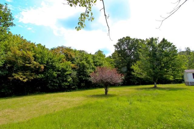 Parcel 18. Carson Springs Rd, Newport, TN 37821 (#1087003) :: The Creel Group | Keller Williams Realty