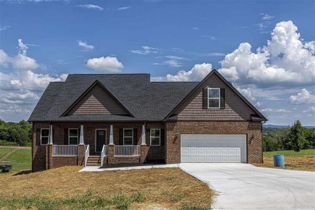 155 Overlook Rd, Dayton, TN 37321 (#1087213) :: SMOKY's Real Estate LLC