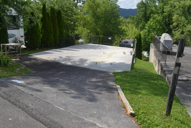 Highway 73 #61, Townsend, TN 37882 (#1087220) :: Realty Executives