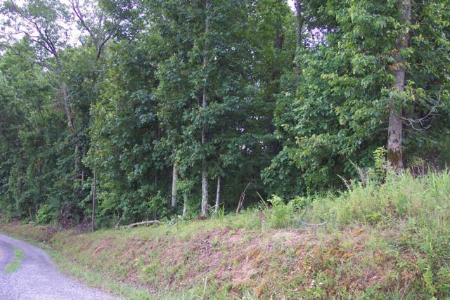 000 Ridgetop Lane, Ten Mile, TN 37880 (#1087227) :: The Creel Group | Keller Williams Realty