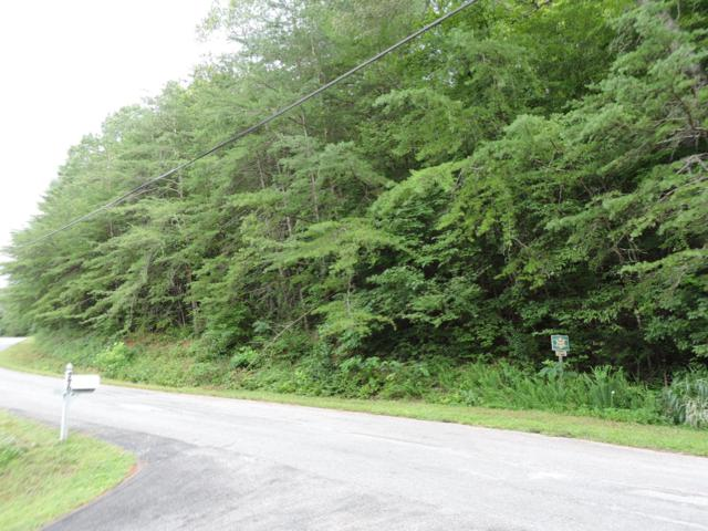 Cove Point Rd., LaFollette, TN 37766 (#1087268) :: Realty Executives