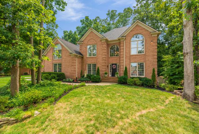 401 Battle Front Tr, Knoxville, TN 37934 (#1087269) :: Shannon Foster Boline Group