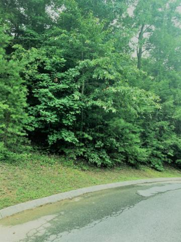 Golden Eagle Way, Pigeon Forge, TN 37863 (#1087293) :: The Terrell Team