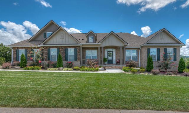 1432 Park Place Ave, Sevierville, TN 37862 (#1087376) :: Realty Executives