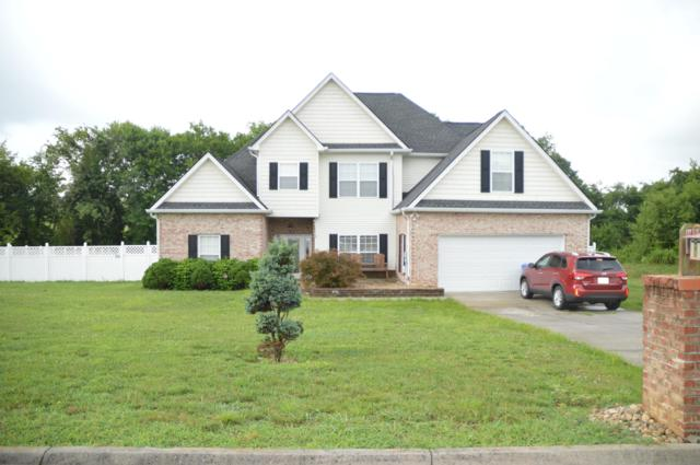 9316 Gabrielle Rd, Strawberry Plains, TN 37871 (#1087385) :: Catrina Foster Group