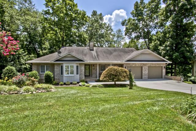 105 Agowa Place, Loudon, TN 37774 (#1087404) :: Shannon Foster Boline Group