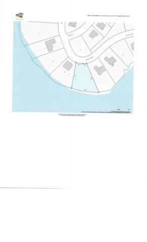 201 Amohi Way, Loudon, TN 37774 (#1087428) :: Billy Houston Group