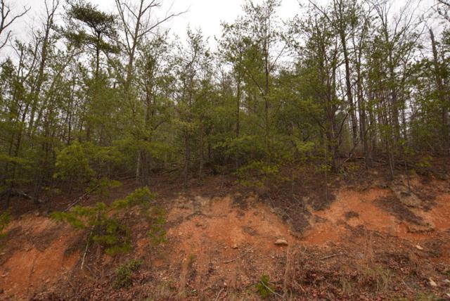 Lot 69 Big Bear Ridge Rd, Gatlinburg, TN 37738 (#1087474) :: Billy Houston Group