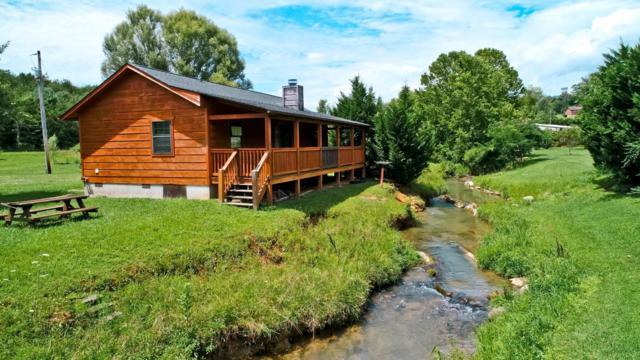 1639 Cedar Haven Way, Newport, TN 37821 (#1087540) :: SMOKY's Real Estate LLC