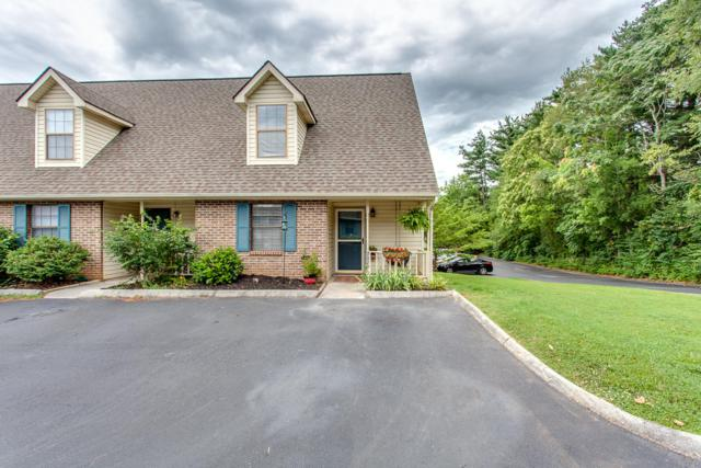 9029 Fountain Brook Lane, Knoxville, TN 37923 (#1087605) :: Billy Houston Group