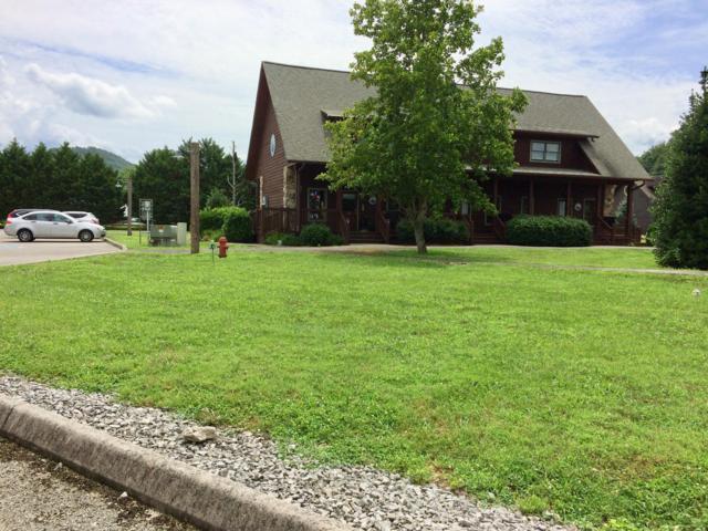 131 Painted Trillum Way, Townsend, TN 37882 (#1087610) :: SMOKY's Real Estate LLC