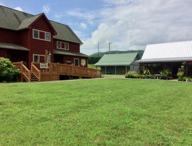 133 Painted Trillum Way, Townsend, TN 37882 (#1087612) :: SMOKY's Real Estate LLC