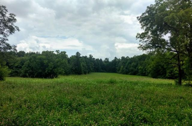 County Road 516, Englewood, TN 37329 (#1087636) :: The Cook Team